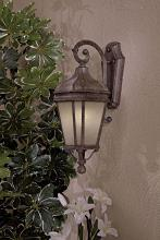 Minka-Lavery 8691-1-61-pl - 1 Light Outdoor