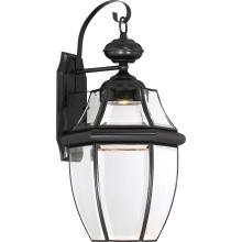 Quoizel NYCL8411K - Newbury Clear LED Outdoor Lantern